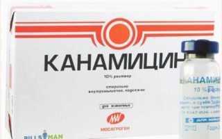 Что помогает от стоматита? Аптечные средства и народные рецепты!