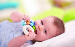 Какие лучшие прорезыватели для зубов: в виде соски, бусы, игрушки или другие?